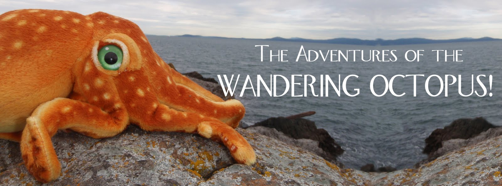 The Adventures of the Wandering Octopus