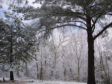 Winter 2009