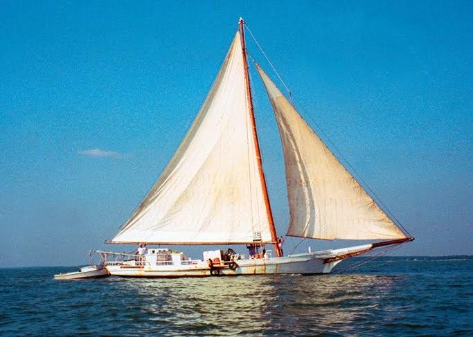 The Pocomoke Public Eye: Skipjack Race Winner