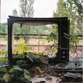 tv roto