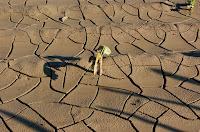 Une terre aride, altérée, sans eau