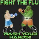 fight H1N1