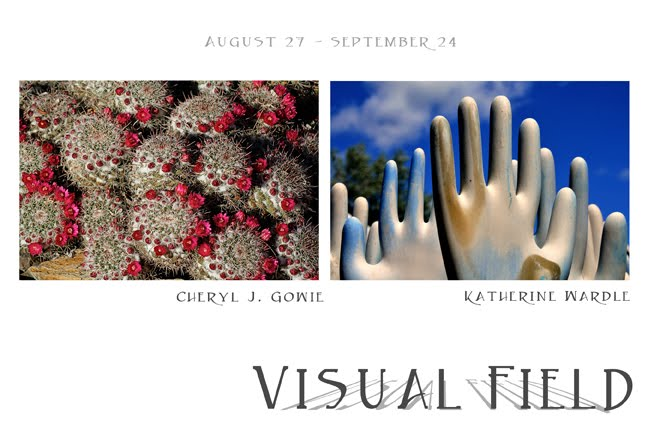 Visual Field Exhibit