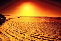 desert salt electrolytes running
