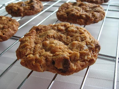 Peanut Butter Oatmeal Chocolate Chipsters Recipes — Dishmaps