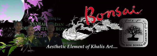 Khalis Art