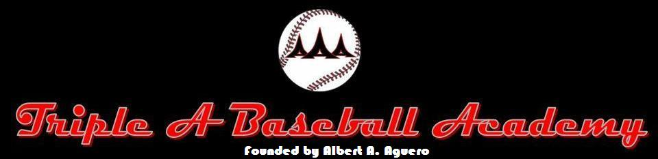 Triple A Baseball Academy