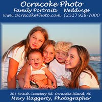 Family Portraits and Weddings