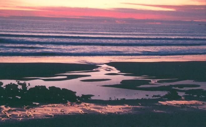 Praia de S. Torpes