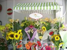 Flores mi Campo