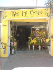 Flores mi Campo - Casa Integral