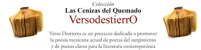 Colección Las Cenizas del Quemado