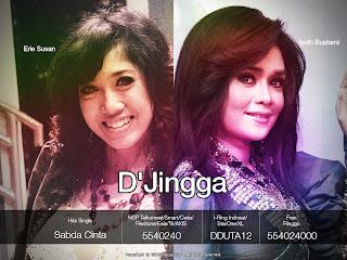 D'Jingga