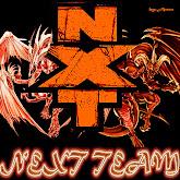 Next Team