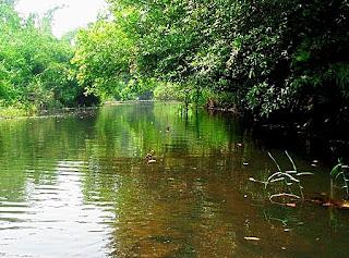 Nam Sai Lake