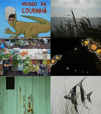 Por terras do Lourinhanosaurus