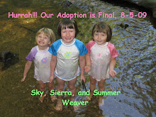 Our Daughters Adoption is Final!!!