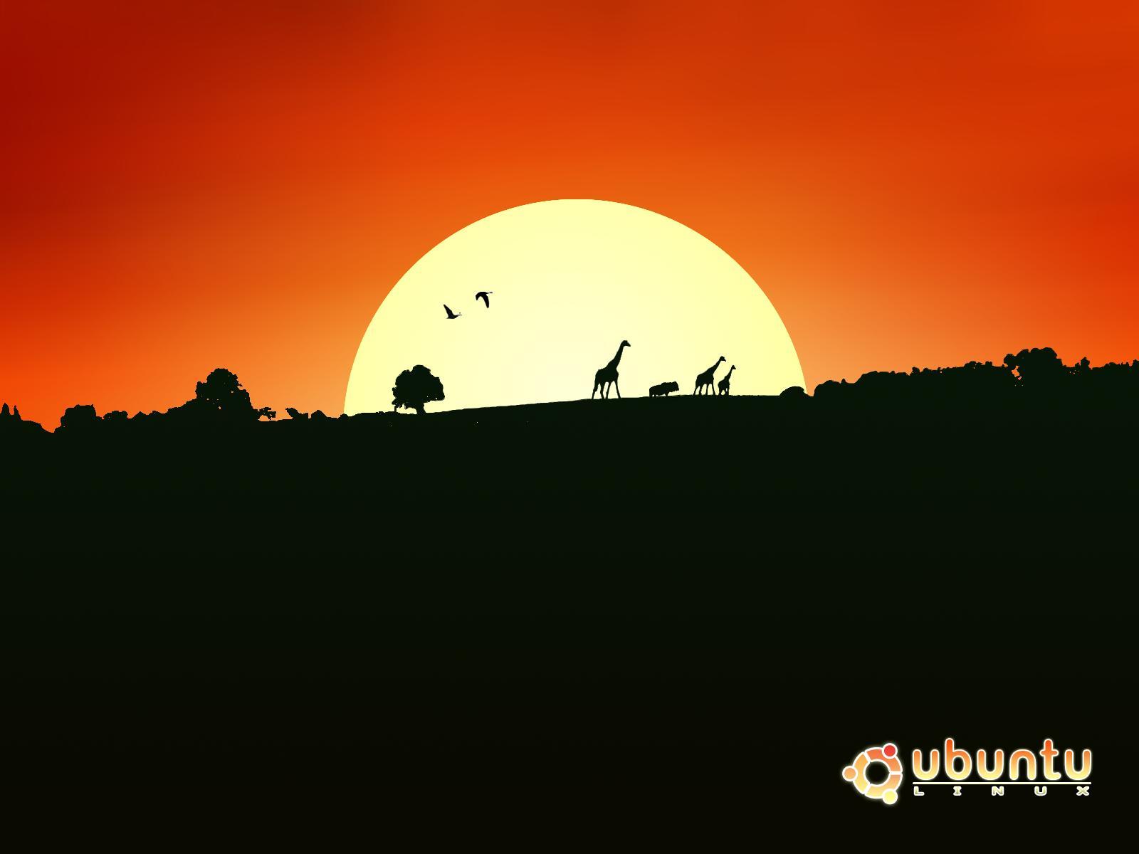 http://4.bp.blogspot.com/_W1ueYt1O3xs/RuKFHKfbjEI/AAAAAAAAA6s/MOfzwnnn9fg/s1600/back_to_the_nature_1600x1200.jpg