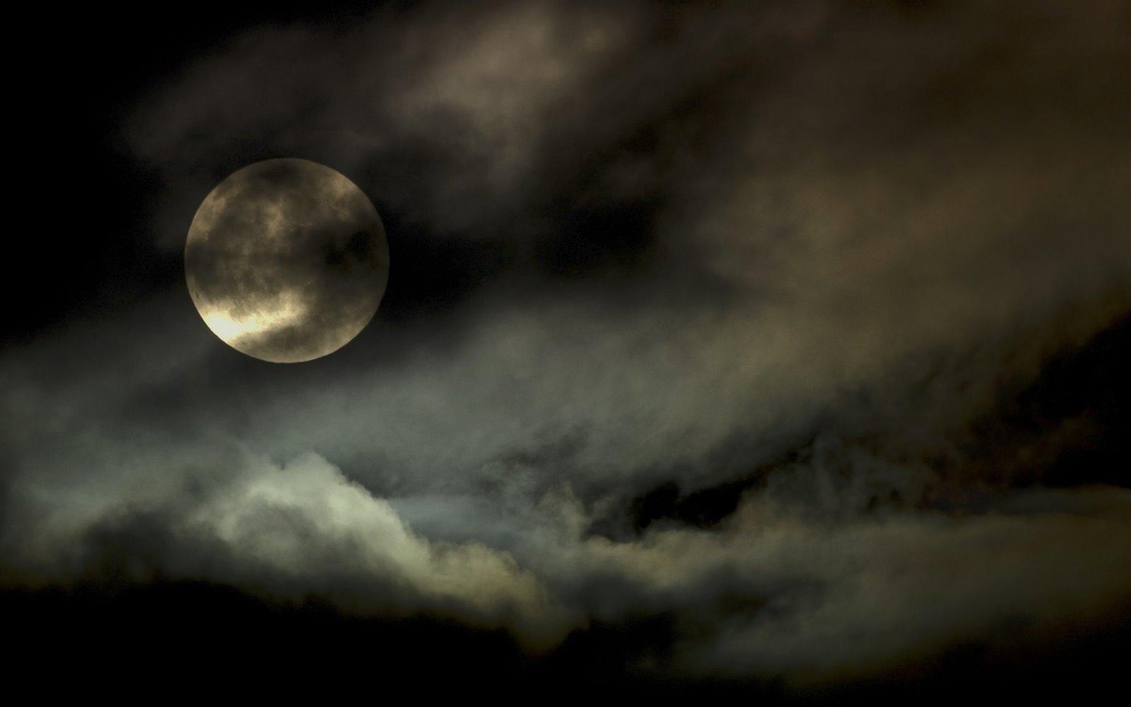 http://4.bp.blogspot.com/_W1ueYt1O3xs/TMv7lUU4gyI/AAAAAAAAXAs/xTGJNjbclYg/d/Halloween+Wallpapers+1920x1200-12.jpg