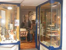 Galeria  Pau d'Arara