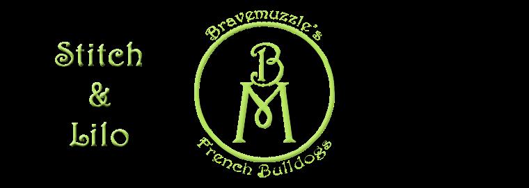 Bravemuzzle's ranskikset