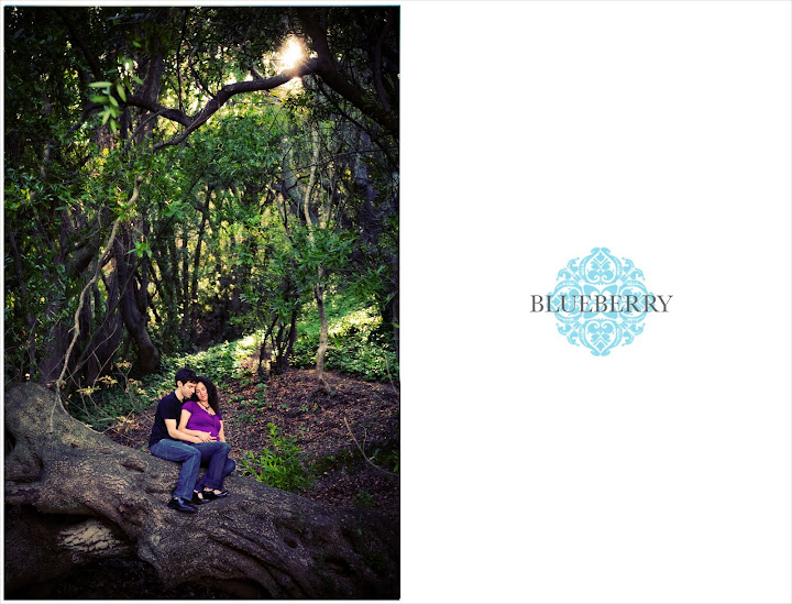 east bay maternity photographer