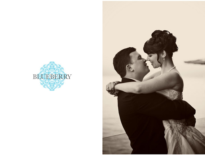 wine country wedding photographer