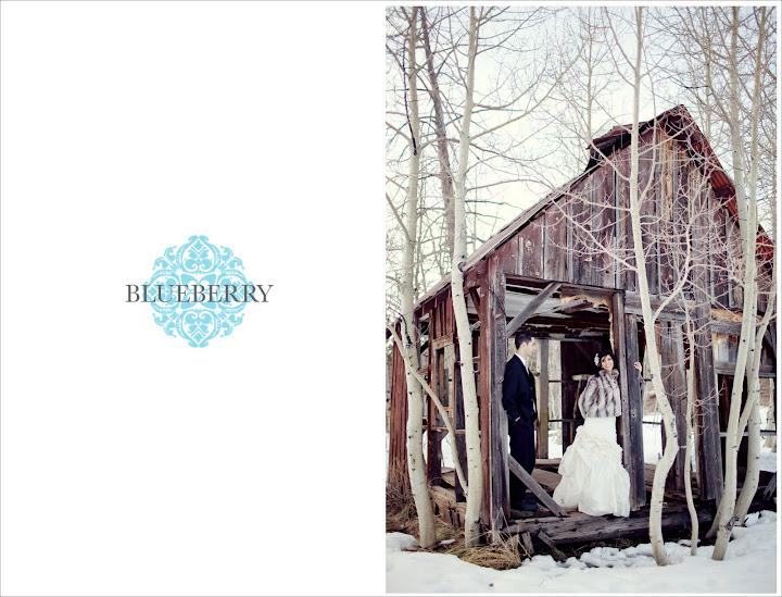 professional bay area sf wedding photographer tahoe reno