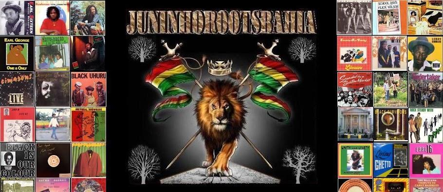 juninhorootsbahia.com