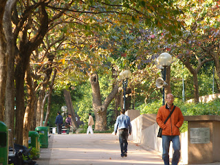 travel, srolling around, kowloon park, hongkong, china