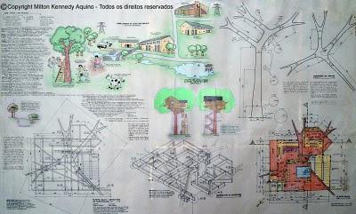 Projeto casa em cima da árvore
