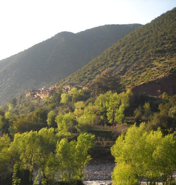 Beyond Marrakech: Guesthouse Dar Zohra