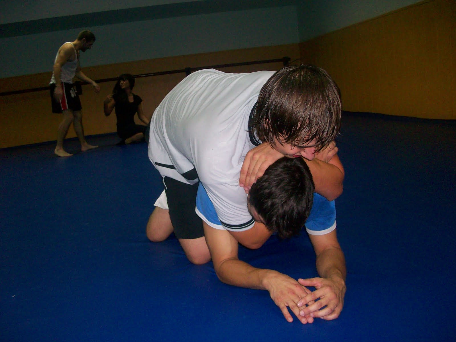 Bandog fight club entrenamiento gimnasio shotokan 02 11 10 for Entrenamiento gimnasio