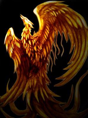 Bing Phoenix