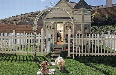 rumah anjing