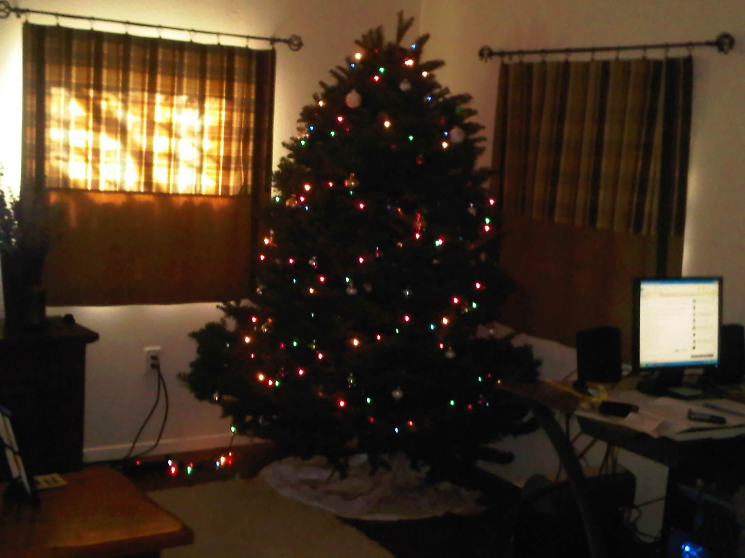 1st adult Christmas tree