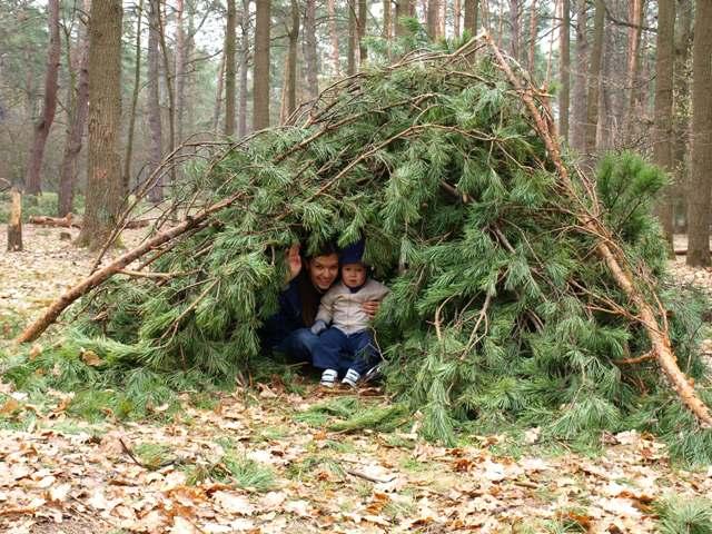 Самодельный шалаш в лесу своими руками