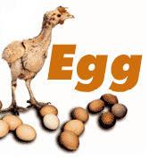 PETA egg costs animal rights welfare