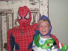 Spidy and Buzz