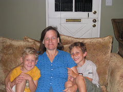 Aunt Traci visits the boys