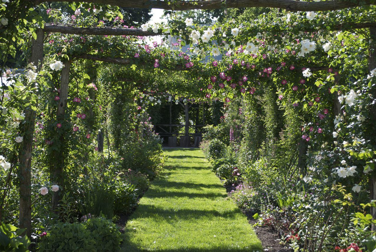 Flower hill farm smith college capen garden seasonal for Flower hill farms