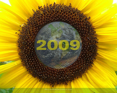 beautyfull wallpaper. Sun flower 2009 themes wallpaper (graphicfreebies)