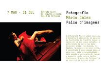 Exposição Fotográfica no Auditório de Espinho de   07-Mar a 31-Jul