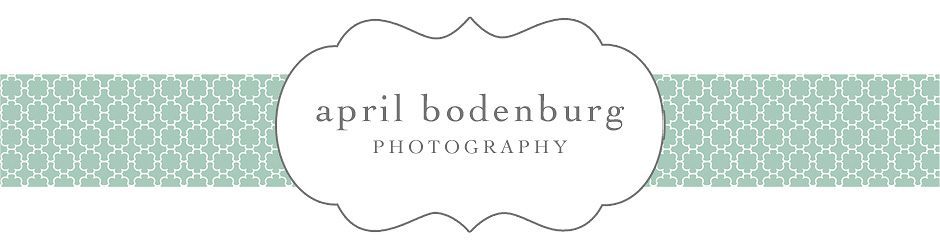 april bodenburg photography | blog