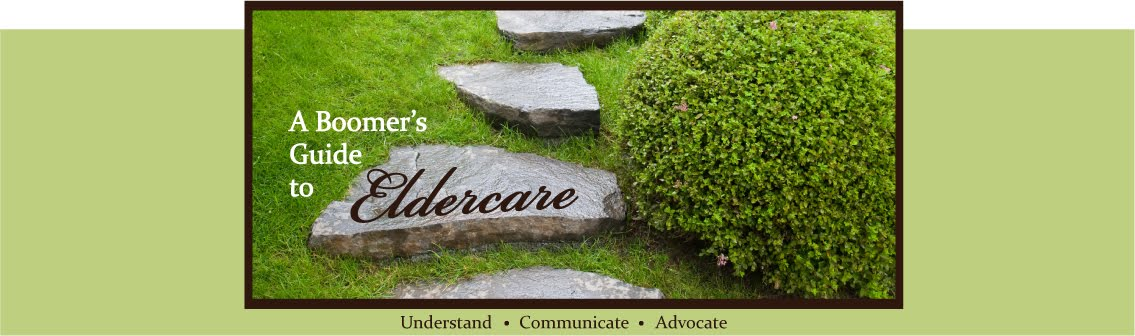 Boomer's Guide to Eldercare- About this Blog
