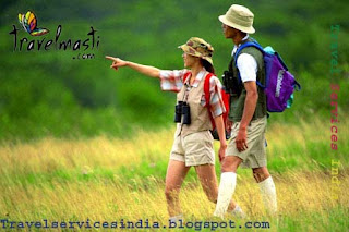 Travel Services India