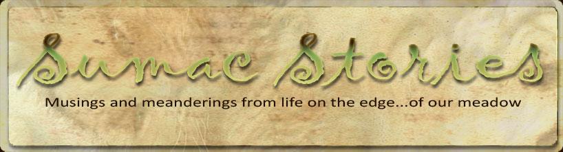 Sumac Stories