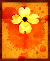 a yellow flower on an orange background