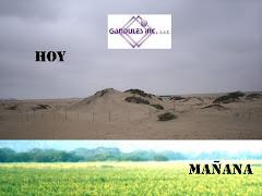 BIENVENIDO GANDULES