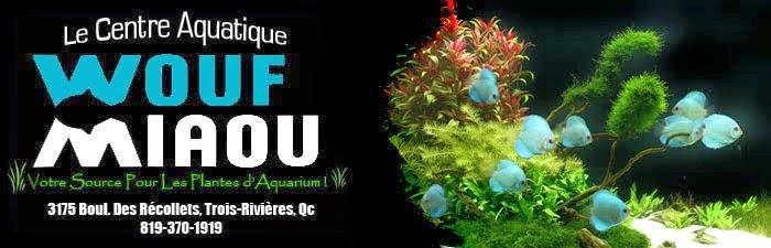 Centre aquatique Wouf Miaou Banieres+cwm+final